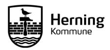 City of Herning